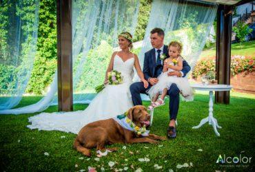 Com celebrar el casament perfecte