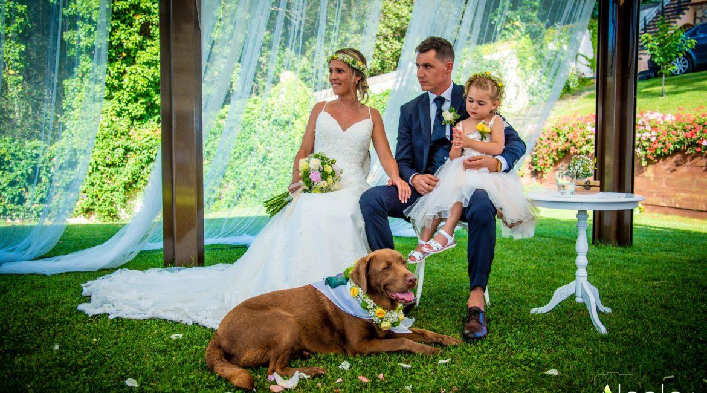 Cómo celebrar la boda perfecta